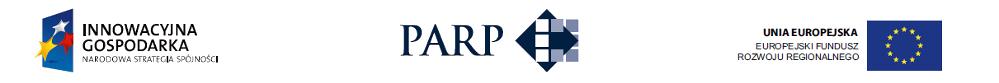PARP, Innowacyjna Gospodarka Narodowa Strategia Spójności, Unia Europejska